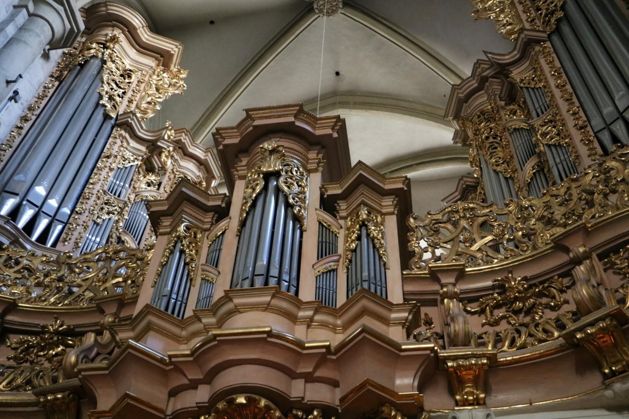 Die Sieber-Orgel